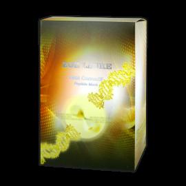 基因再生循環修護面膜 - 10 片裝